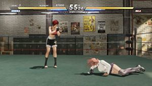 DEAD OR ALIVE 6 Free Download Repack Games