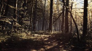 Blair Witch Free Download Repack-Games