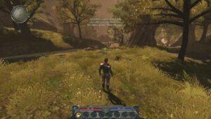 Divinity II: Developer's Cut Free Download Repack-Games